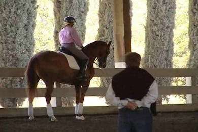 Focus on basics, using transitions by Dressage Today Online