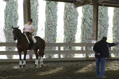 Walk pirouettes, lateral work by Dressage Today Online