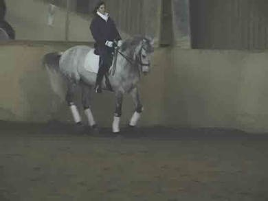 Walk pirouettes, counter canter, changes, half pass by Dressage Today Online