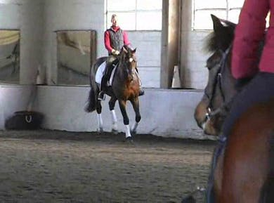 Canter work, and making the flying changes bigger behind. by Dressage Today Online