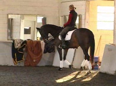 Basic warm up by Dressage Today Online
