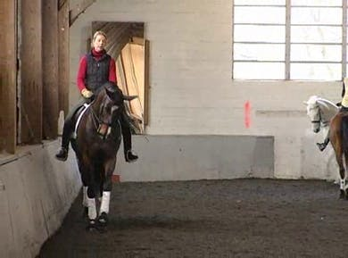 Pirouettes and 1/2 pass work by Dressage Today Online