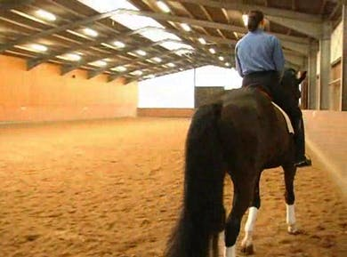 More in-depth Position and obtaining flexion by Dressage Today Online