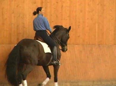 How to use your seat effectively by Dressage Today Online