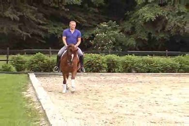 working with forwardness to problem solve by Dressage Today Online