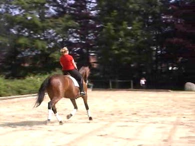 Catherine watches and critiques a run through of the PSG test. by Dressage Today Online