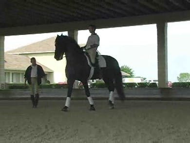 Part 3: Playing with piaffe steps. Canter work and flying changes. by Dressage Today Online