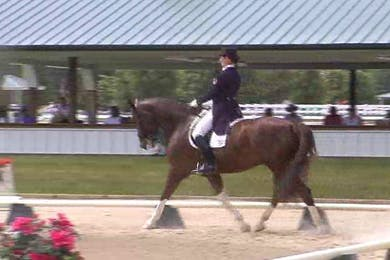 Test: Developing Horse Test by Dressage Today Online
