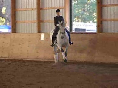 PSG, I1, Young Rider, part 3 by Dressage Today Online