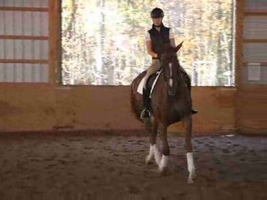 PSG, I1, Young Rider, part 5 by Dressage Today Online