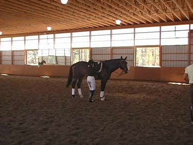 Intermediare II, I2, and Grand Prix, part 4 by Dressage Today Online