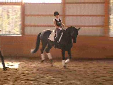 Fourth Level by Dressage Today Online