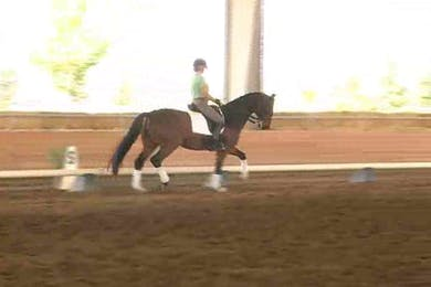 Tanya Vik, part 1, day 1 by Dressage Today Online