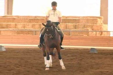 Tanya Vik, part 3, day 1 by Dressage Today Online