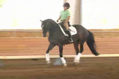 Taryn, part 2, day 1 by Dressage Today Online