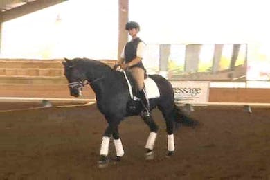 Heather Robertson, part 3, day 1, using leg yield and shoulder in to introduce the half pass by Dressage Today Online