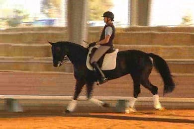 Liz Hendrix, part 1 day 2 by Dressage Today Online