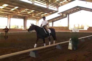 Jeremy Steinberg, part 1, day 2, Jan takes a spin on Jeremy's horse to get the feel and provide better feedback to Jeremy.  by Dressage Today Online