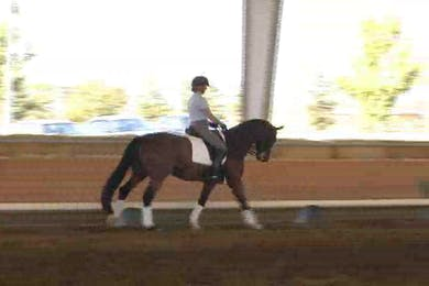 Tanya Vik, part 3, day 2, how to prepare the flying changes in the half pass zig zag by Dressage Today Online
