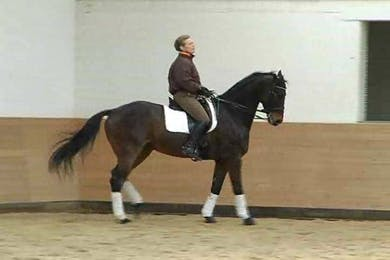 1/2 pass and passage. Getting the horse to stop lying on the bit.  by Dressage Today Online