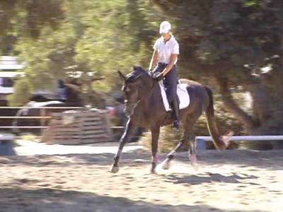Hilda Gurney - Riding the 3-Year-Old by Dressage Today Online