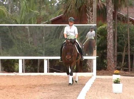 Instant Access to 1/2 pass by Dressage Today Online, powered by Intelivideo