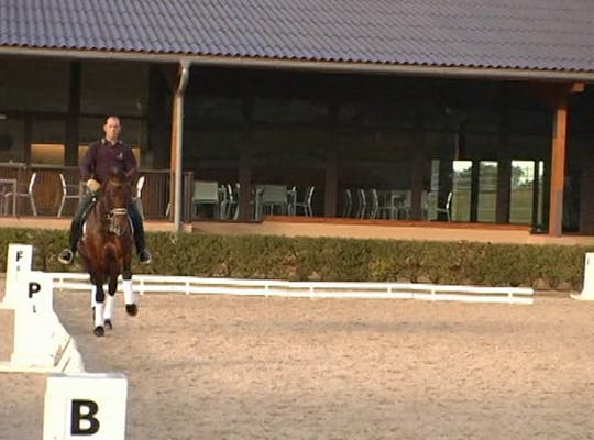Instant Access to 1/2 pass and extended trot and how to develop and use by Dressage Today Online, powered by Intelivideo