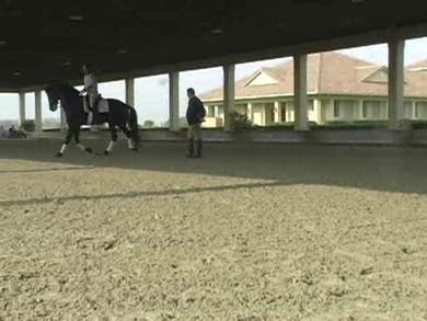 Part 1: Using the lateral work to improve the connection. by Dressage Today Online