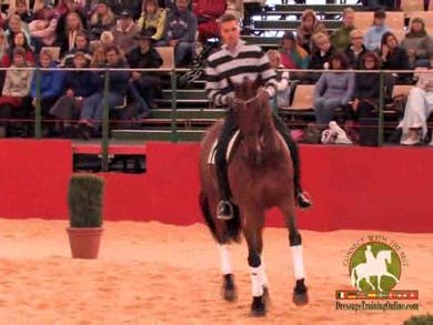 1/2 pass and tempi change work. Looking at asking for the movement at the moment versus what it would look like if you asked when the horse was really prepared to do the movement. Piaffe and Passage is shown, and Andreas demonstrates his use of the whip  by Dressage Today Online