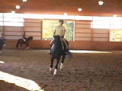 Continued review of training scale and basic training with Steffen.  by Dressage Today Online