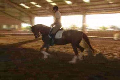 Michael Etherly, part 3, day 1, Jan continues to ride and tries to stretch the horse to the hand, getting his neck out and comfortable.  by Dressage Today Online