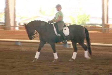 Courtney Frazer, part 1, day 1 by Dressage Today Online