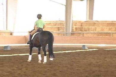 Taryn, part 2, day 2, shoulder in work and continued work on technique by Dressage Today Online