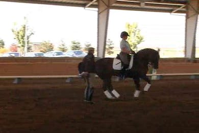 Courtney Frazer, part 2, day 2, More work on getting the horse quick behind and using it to school the canter pirouette. Getting obediance each step of the canter pirouette is discussed and how to fix this taking over that sometimes happens. by Dressage Today Online