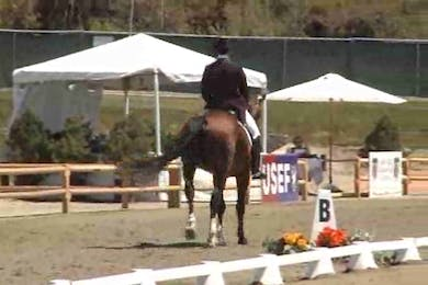 Collecting Gaits Farm / USEF 2008 Dressage Festival of Champions by Dressage Today Online