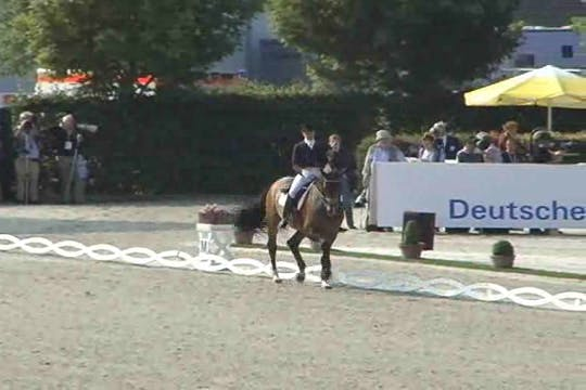 Instant Access to  Tinne Vilhelmson-Silfven, SWE, Solos Carex, 1993, DWB x Castro x Lagano , 69.75 by Dressage Today Online, powered by Intelivideo