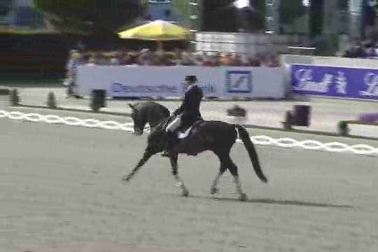 Instant Access to  Jan Brink, SWE, Briar 899, 1991, SWB x Magini x Krocket, 73.05 by Dressage Today Online, powered by Intelivideo