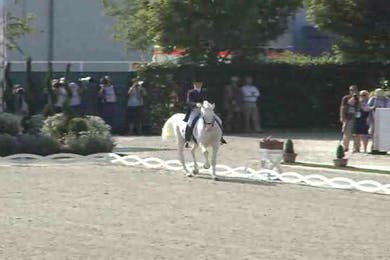 Alexandra Korelova, RUS, Balagur, 1990, x Raskat, 74.60 by Dressage Today Online