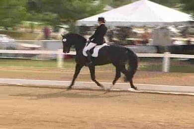 FEI 5 Year Old Young Horse Championship-Finale by Dressage Today Online