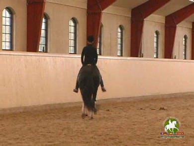 Jan does an excellent job of leading the horse and rider through prepatory excercises for both mind and body, which will need to be correctly before the flying change is introduced for the very first time. He explains the importance on the horses ability by Dressage Today Online