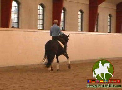 Lateral work, flexion, bending, showing the control one should have. Next we move into canter and work on getting the hind legs quicker through various excercises. These are great for preparing your horse for the changes. Jan discusses how he works on imp by Dressage Today Online