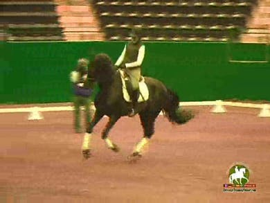 Encouragement and how to use the centerline for schooling. by Dressage Today Online