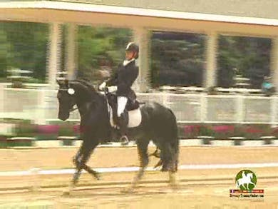 Alice Tarjan riding Somer Hit, 8.5, 8.5, 7.6, 7.9, 8.2   81.4% by Dressage Today Online