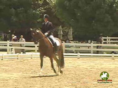 Caitlin Masiel riding DG Bantana, 8.8, 7.2, 8.6, 8.5, 8.5   83.2% by Dressage Today Online