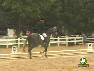 Willy Arts riding DG Brendo, 9.0, 7.5, 9.0, 7.8, 9.0   84.6% by Dressage Today Online