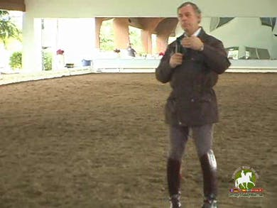 Part 2 by Dressage Today Online