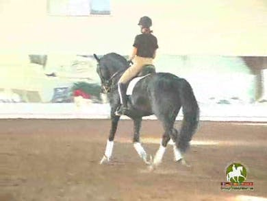 Linda, part 1, day 1,  by Dressage Today Online