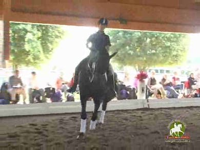 Linda, part 2, day 1,  by Dressage Today Online