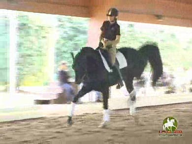 Linda, part 3, day 1,  by Dressage Today Online