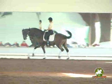 Jennifer Baumert, part 3, day 1 by Dressage Today Online